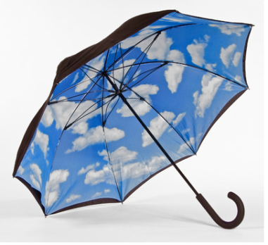 Elile Lotus Frame Sky Umbrella $28 at SEARS