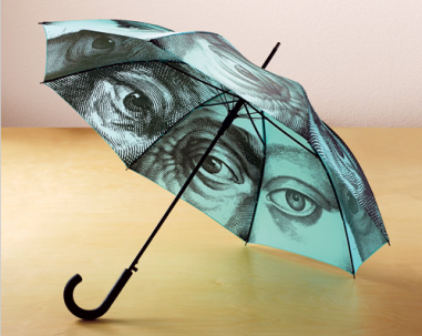Eye Engraving Umbrella $28 at ART INSTITUTE CHICAGO