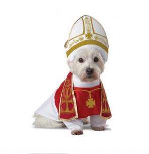 Holy Hound Dog Costume $15 at PET360