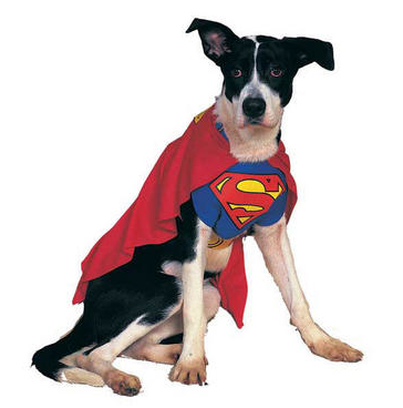 Superman Dog Costume $15 at DC Entertainment