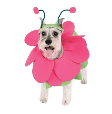 Bloomin' Snout Pet Flower Costume $12 at THE PARTY WORKS