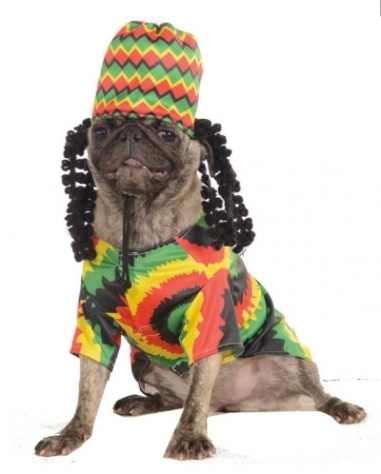 Rasta Dog Costume $16 at PETFLOW