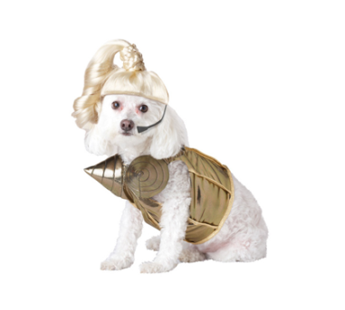Pop Queen (aka Madonna) Dog Costume $23 at PURE COSTUMES