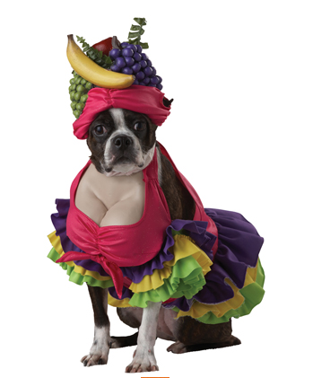 Cha Cha Carmen Dog Costume $28 at PURE COSTUMES