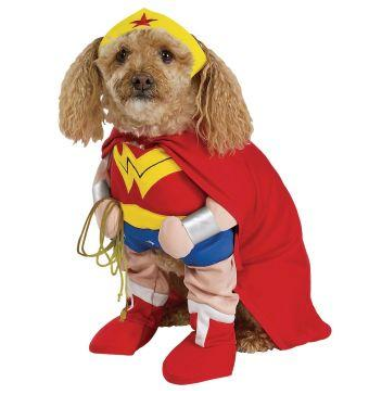 Wonder Woman Deluxe Pet Costume $17 at HOLLYWOOD TOYS AND COSTUMES