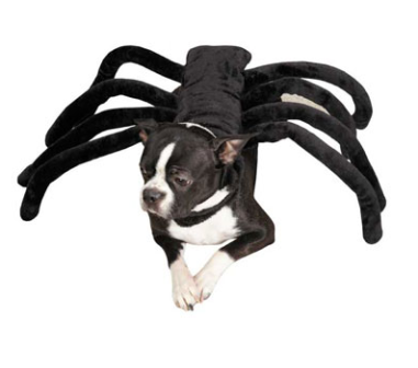 Grr-antula Dog Costume $22 at FUNNY FUR